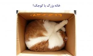 خانه بزرگ یا کو چک برای گربه - بیمارستان دامپزشکی شبانه روزی رویال | Cat small or big home