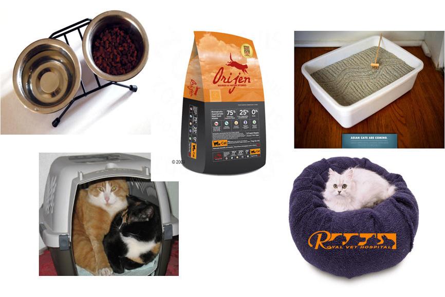 تجهیزات مورد نیاز نگهداری گربه- بیمارستان دامپزشکی شبانه روزی رویال   Cat Accessories - Royal Vet Hospital