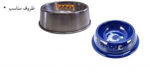 ظروف غذا برای سگ - بیمارستان دامپزشکی شبانه روزی رویال | Dishes for Dogs - Royal Vet Hospital