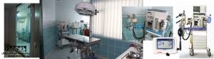 بخش جراحی بیمارستان دامپزشکی رویال | Royal Vet hospital Surgery Department