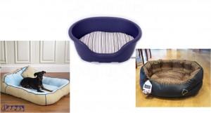 محل خواب دامپزشکی - بیمارستان دامپزشکی رویال | Royal Vet Hospital - Dog veterinary Bed
