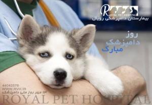 روز دامپرشک - 14 مهر - بیمارستان دامپزشکی رویال   Royal Vet Hospital