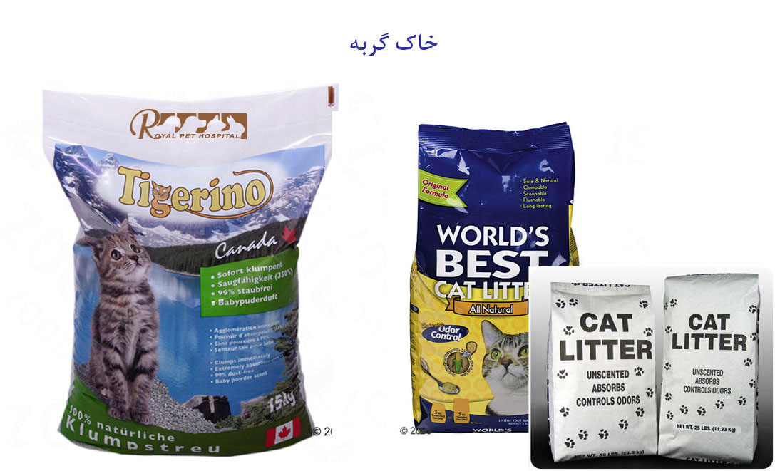 Royal-Pet-Hospital-Cat Litter