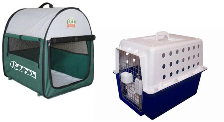 Royal Pet Hospital-Cat Box