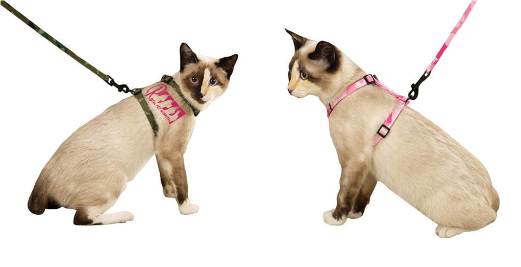 Royal Pet Hospital-Cat Harness&Lead
