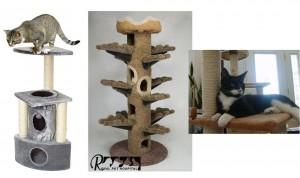 اسباب بازی ها و لوازم جانبی گربه - بیمارستان دامپزشکی رویال | Royal Vet Hospital - Cat Toy