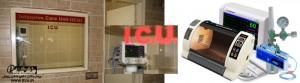 بخش مراقبت های ویژه بیمارستان دامپزشکی رویال | Royal Vet Hospital ICU