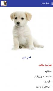 کاتالوگ سگ ها - بیمارستان دامپزشکی شبانه روزی رویال   Dogs Catalog- Royal Vet Hospital