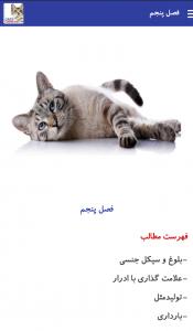 کاتالوگ گربه ها - بیمارستان دامپزشکی شبانه روزی رویال | Cats Catalog- Royal Vet Hospital